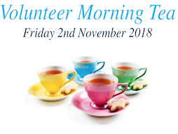 Volunteer Morning Tea